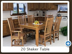 20 Shaker Table